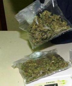 CLIO: Reclami-marijuana-jpg