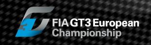 FIA GT3 Championship-screen-shot-2011-06-20-16-55-10-png