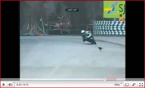 Articolo: Mercedes & Cigarette Racing presentano Vision GT Speedboat-gatto_gp_macao-jpg